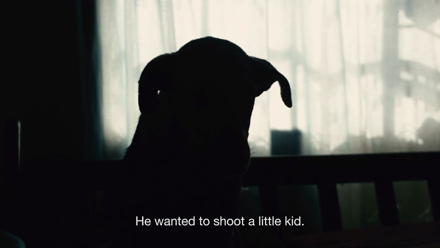 Dog-Takes-Bullet-To-Save-Humans5__880